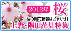 2012上野公園・隅田公園 お花見特集! お花見スポット&開花状況速報!