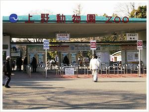 Msm zoo photo01